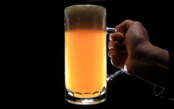 Domácí degustace piva s pivovarem Zlatá Kráva -…