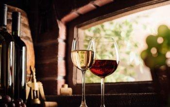 Domácí degustace vín - Vína z vinic Pierra…