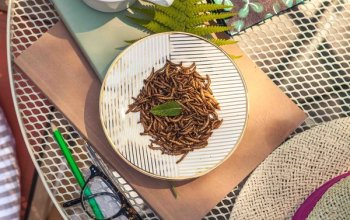 Zážitky na doma | Degustace na doma