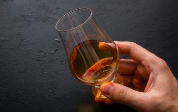 Degustace jídla a alkoholu
