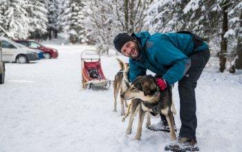 Mushing - jízda se psím spřežením Vysočina