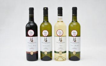 Dárkové balení vína: 4 láhve + dobroty