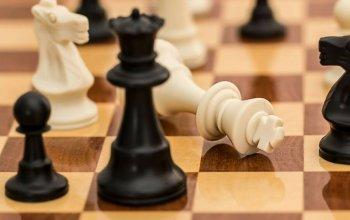 Online šachový kurz pro začátečníky a mírně…