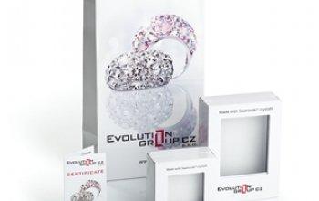 EVOLUTION GROUP CZ Dětské stříbrné náušnice s…