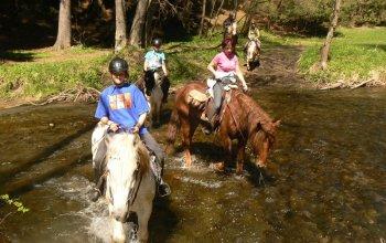 Sportovní zážitky | Zážitky se zvířaty
