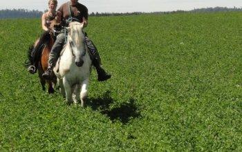 Vyjížďka na koni ve dvou
